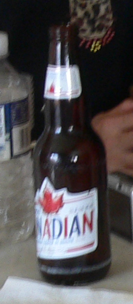 Molosn Canadian