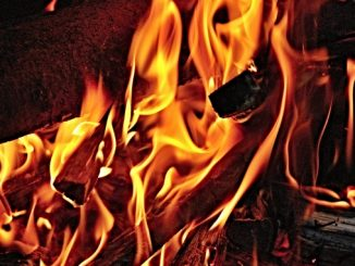 seasoned firewood is imporrtant -- firewood burning