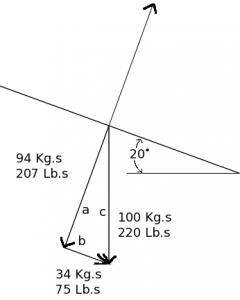 Free Body Diagram 220 pound skier on a 20 degree slope