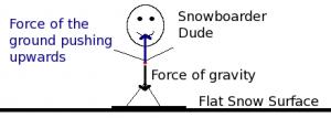 Basic and Elementary Free Body Diagram