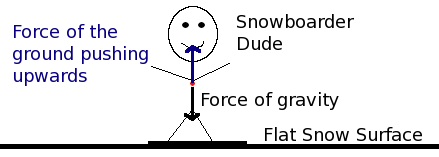 Amazing Free Body Diagram The Wisconsin Skier Wiring 101 Xrenketaxxcnl