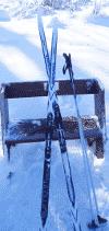 skinny skis aka xc skis