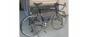My Fitness Journey -- my Trek 5.9 road Bicycle