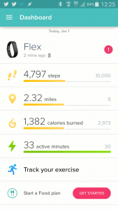 Fitbit Skiing