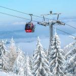 bad ski news -- a gondola and ghostly trees
