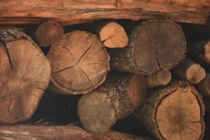 signs of seasoned firewood -- stacked firewood