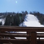 This is a BLUEBIRD Day